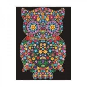 Colorvelvet: malowanka SOWA 47x35cm