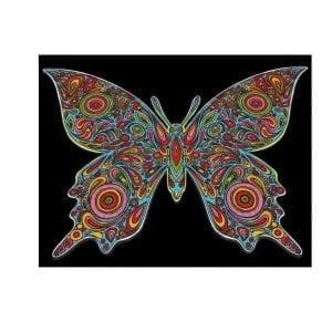 Colorvelvet: malowanka motyl 47x35cm